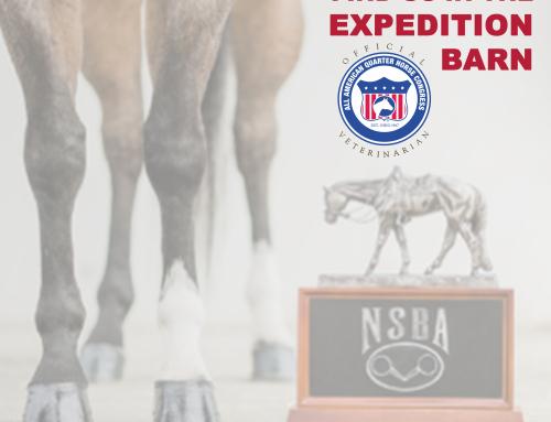 NSBA World Championship Show